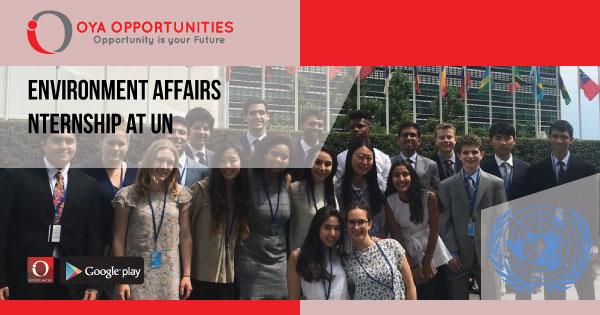 Environment Affairs Internship at UN