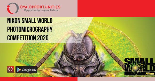 Nikon Small World Photomicrography Competition 2020