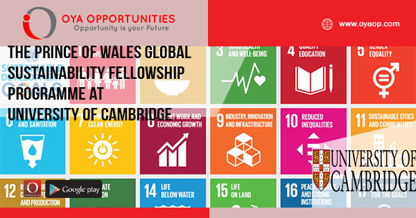 The Prince of Wales Global Sustainability Fellowship Programme at University of Cambridge (Funded)