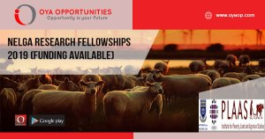 NELGA research fellowships 2019 (Funding Available)