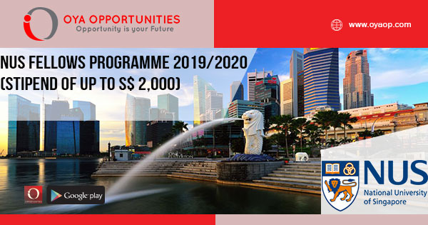 NUS Fellows Programme 2019/2020 (stipend of up to S$ 2,000)