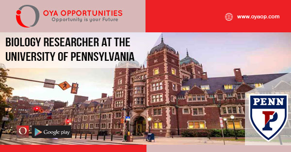 Research Jobs at the University of Pennsylvania