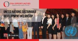 United Nations Sustainable Development Internship