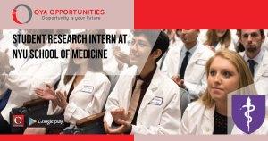 Student Research Intern at NYU School of Medicine