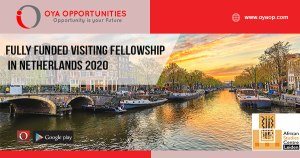 Fully Funded Visiting Fellowship in Netherlands 2020