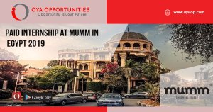 Paid Internship at mumm in Egypt 2019