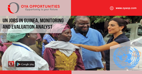 UN jobs in Guinea, Monitoring and Evaluation Analyst