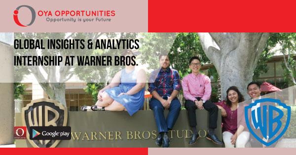 Global Insights & Analytics Internship at Warner Bros.