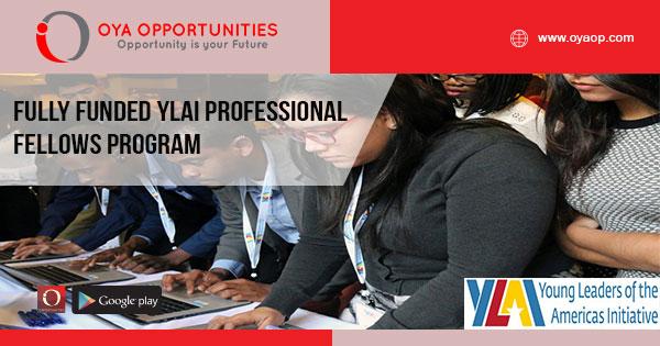 Fully Funded YLAI Professional Fellows Program