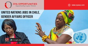 Gender Affairs jobs at UN, Santiago
