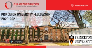 Princeton University Fellowship 2020-2021