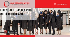 Fully Funded Scholarship in the Netherlands