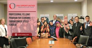Professional Fellows Program for Economic Empowerment (Fully Funded)