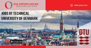 Jobs at Technical University of Denmark