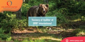 Vacancy of Auditor at WWF International