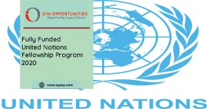 United Nations Fellowship Program 2020