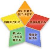 star5つのポイント