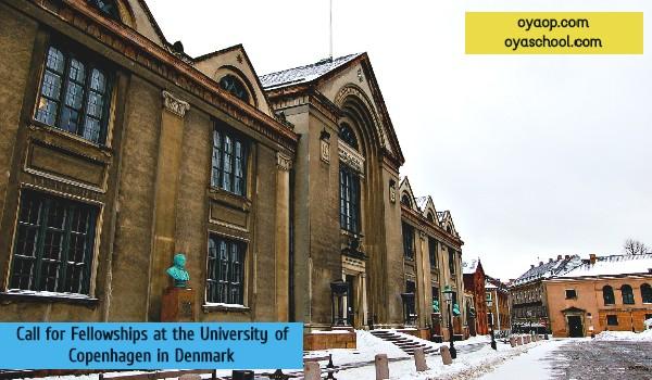 Call for Fellowships at the University of Copenhagen in Denmark