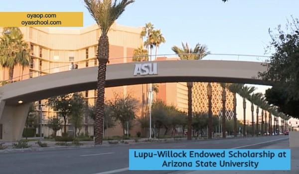 Lupu-Willock Endowed Scholarship at Arizona State University