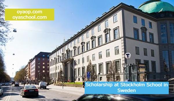Scholarship at Stockholm School in Sweden