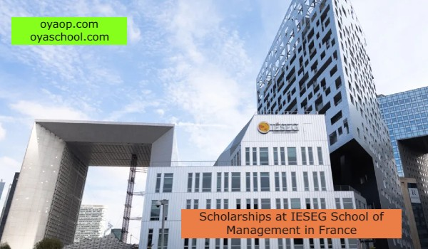 Scholarships at IESEG School of Management in France