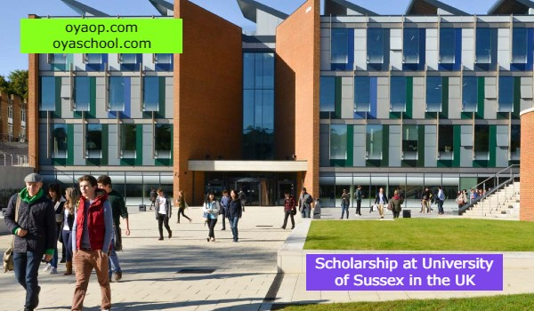 Scholarship at University of Sussex in the UK