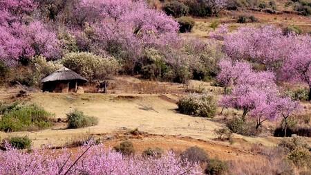 Lesotho 927564 1280