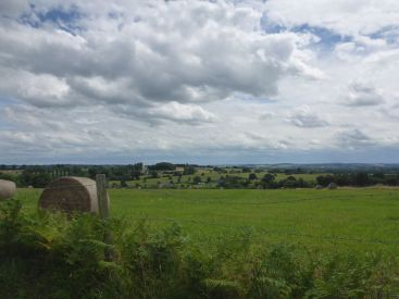 Paysage normand   Normand landscape