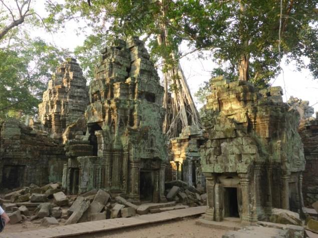 Angkor : Ta Prohm