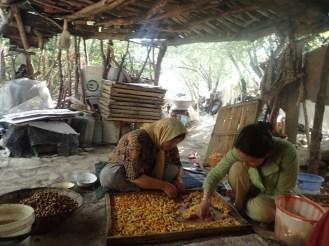 Famille de Elahe, séchage des abricots | Elahe family, apricots driying.