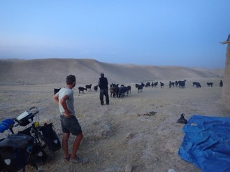 Montage de la tente avec un berger | We pitched the tent with a shepherd