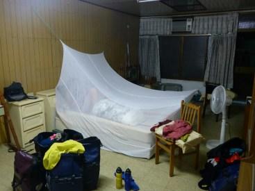 Il parait que la dengue sévit à Taïwan | We heard there is thze dengue fever un Taiwan
