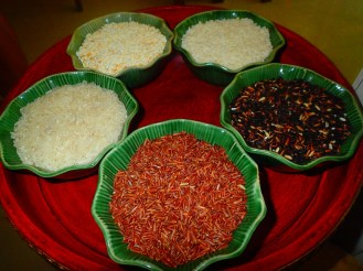 Différentes sortes de riz | Different kind of rice