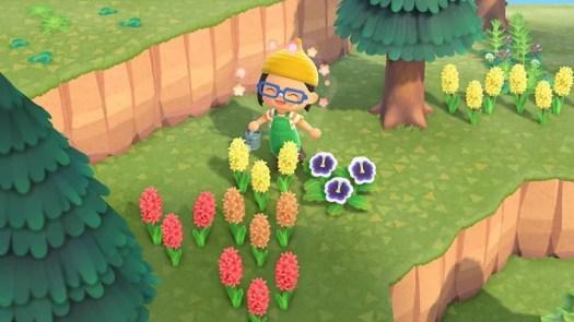 Flowersgrowing.jpg