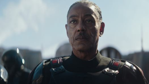 The Mandalorian: Every Character/Cameo in Season 1 and Upcoming Character in Season 2 28