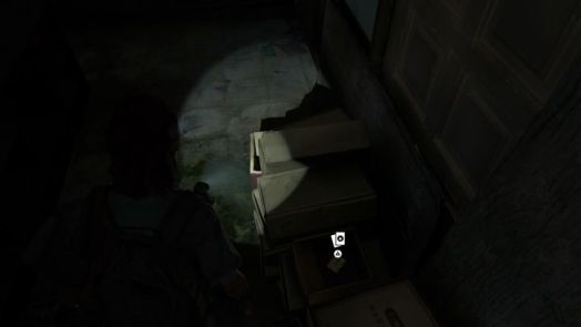 The Last of Us 2 Trading Card Locations Guide 35