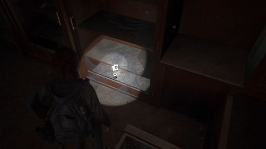 The Last of Us 2 Trading Card Locations Guide 30