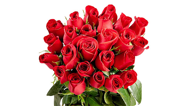 roses1 Last Minute Valentine's Day Gift Deal: Get 2 Dozen Roses for $19.99   IGN