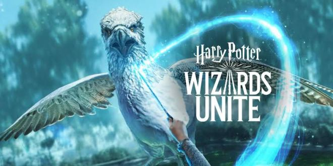 Harry Potter Wizard Unit