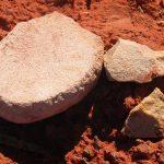 Aboriginal Dish Flakes Mt Manara