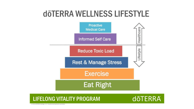 dt wellness lfst