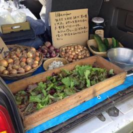 Oze Katashina 'Iikarakan Organic Farm'