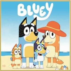 Bluey DVDs