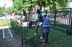 tour of garden