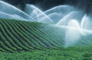 L'ozono viene già utilizzato in agricoltura per disinfettare gli ambienti e ripulire le acque