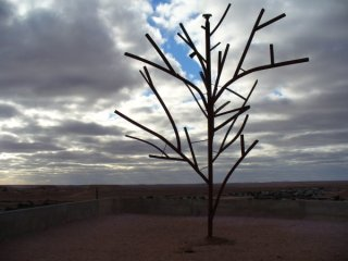 3953847-the-first-tree-in-coober-pedy-0