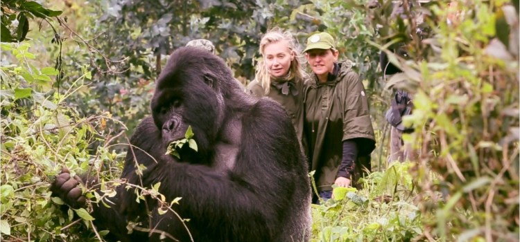 Women Saving the Great Apes