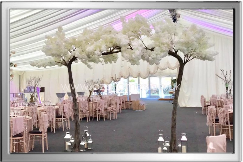 blossom canopy tree hire cheshire