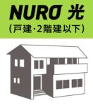 nurohikari
