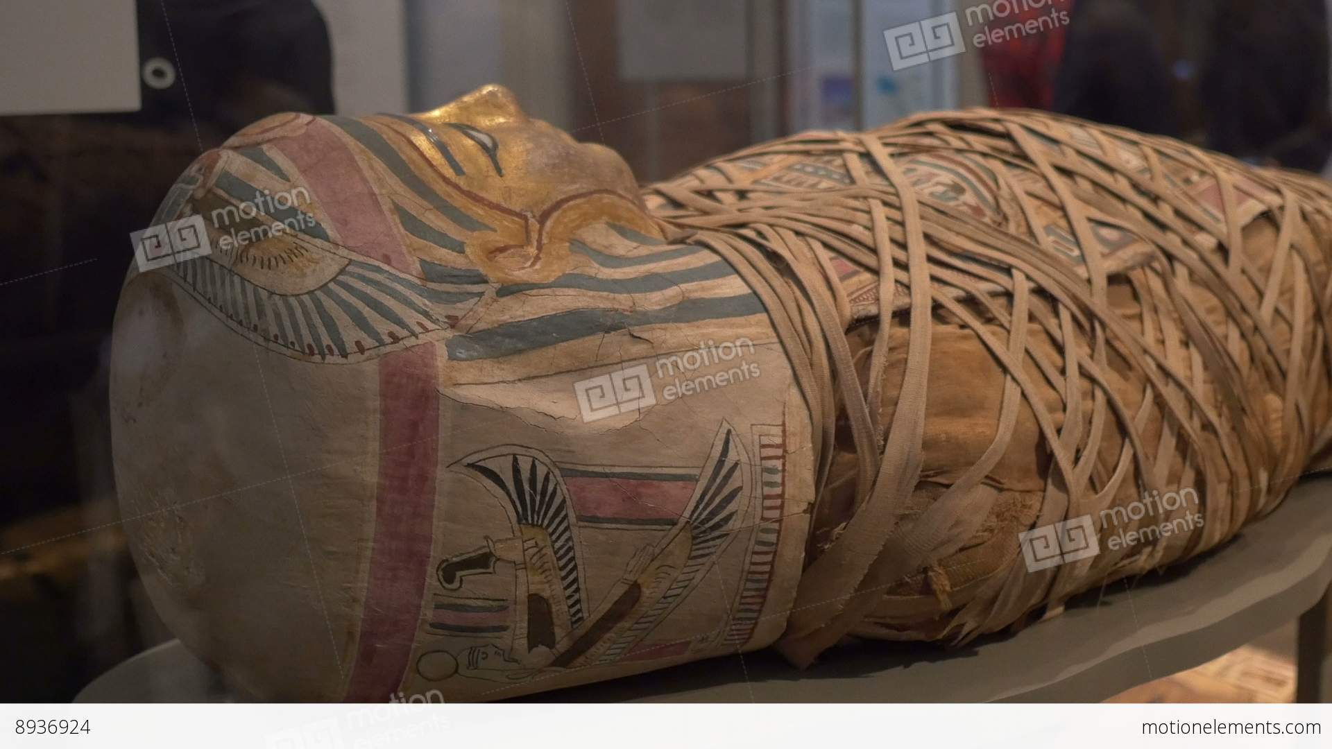 Ancient Egypt Mummy Exposed Stock Video Footage